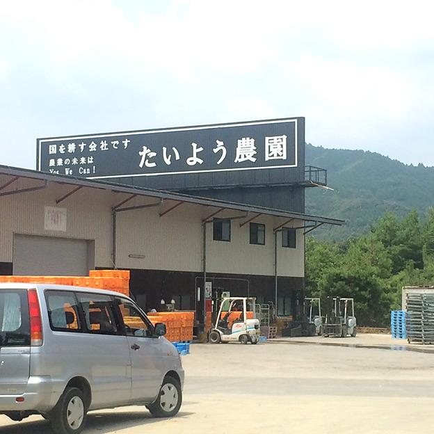 鳥取のおいしい野菜 TREE&NORF 農事組合法人 たいよう農園を視察訪問