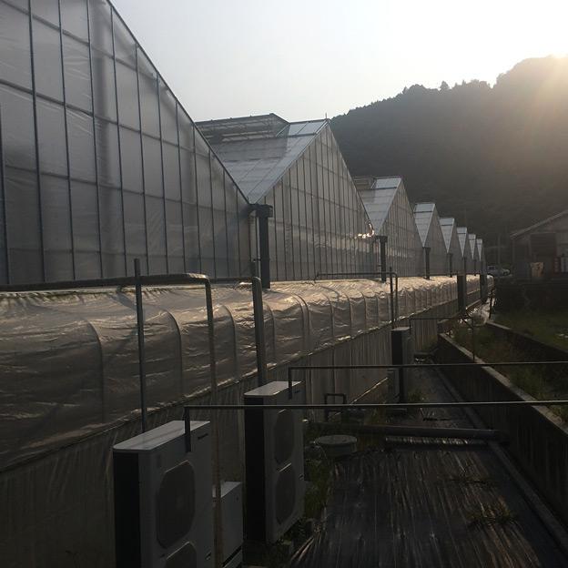 鳥取のおいしい野菜 TREE&NORF ベルグアース株式会社を視察訪問