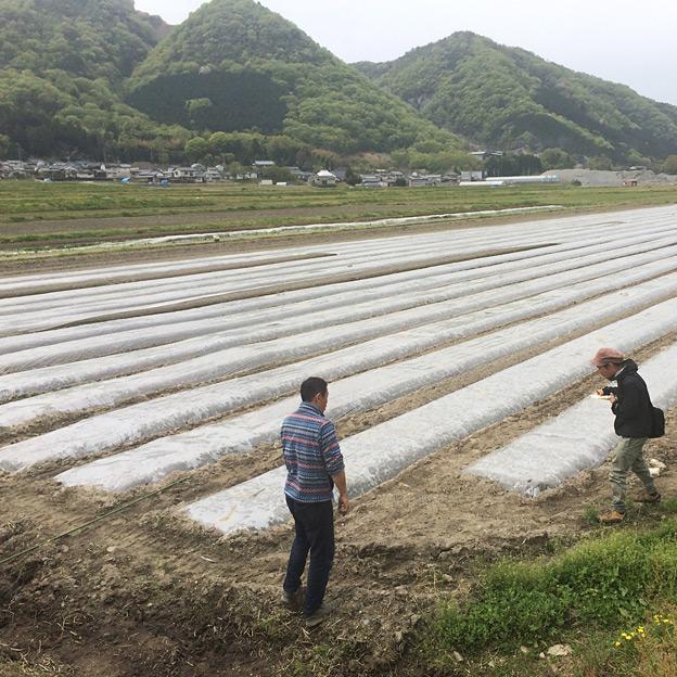鳥取のおいしい有機野菜 TREE&NORF/岡山県里山農場