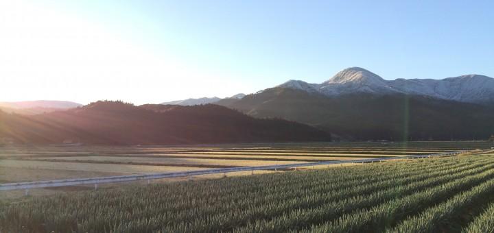 鷲峯山の雪化粧