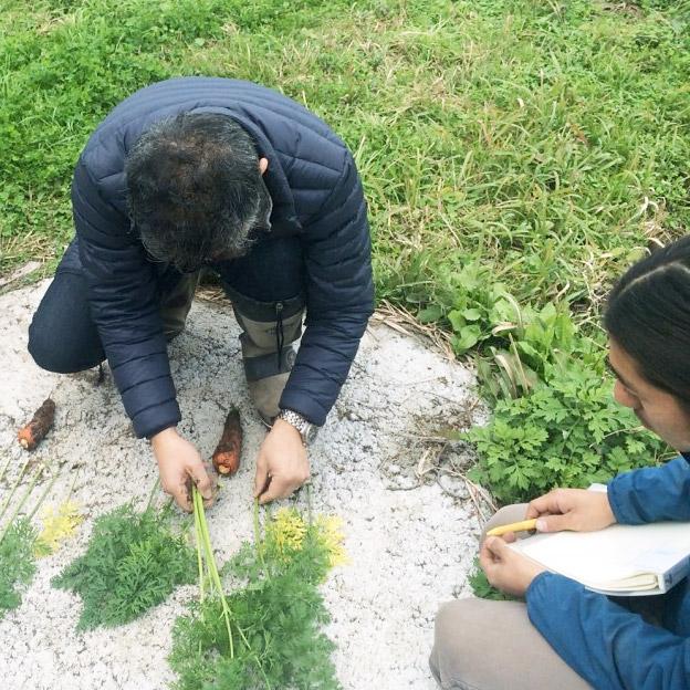 TREE&NORF-ジャパンバイオファーム元木氏ににんじんの葉の読み方を教わる
