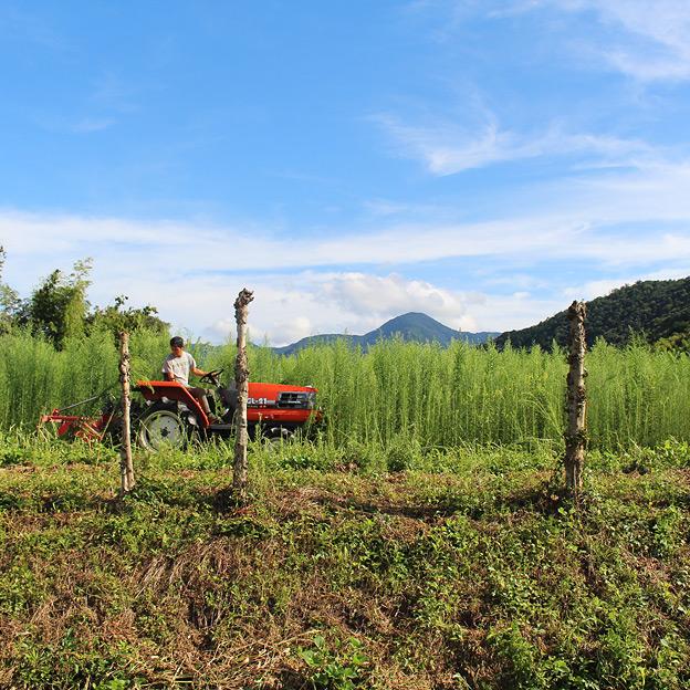 鳥取のおいしい野菜 TREE&NORF 農業に使うマシンたち - ニプロフレールモア