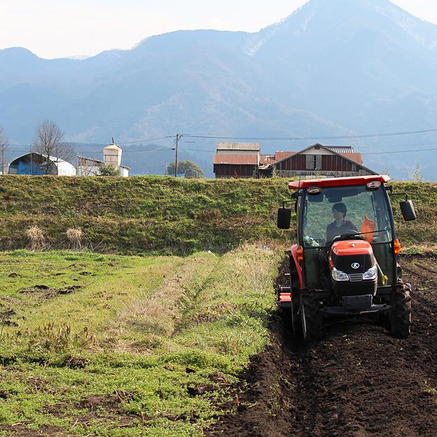 鳥取のおいしい有機野菜 TREE&NORF 2016年の有機じゃがいもの栽培スタート