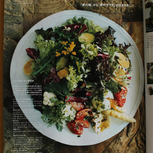鳥取のおいしい野菜 TREE&NORF / 「野菜の楽しみ。」 Casa BRUTUS 2016年6月号