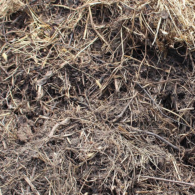 鳥取のおいしい野菜 TREE&NORF ほ場の堆肥を散布