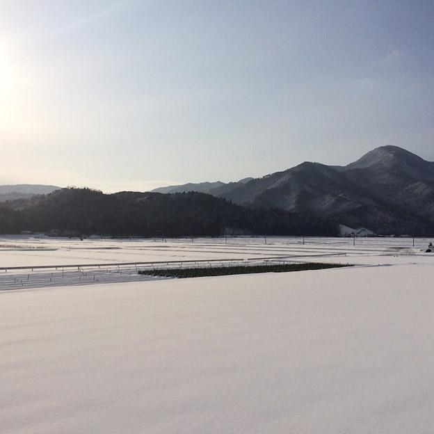 鳥取のおいしい有機野菜TREE&NORF/雪化粧したほ場