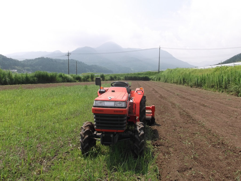 鳥取のおいしい野菜 TREE&NORF/トラクターで耕して市場へ