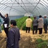 TREE&NORFに農業視察団