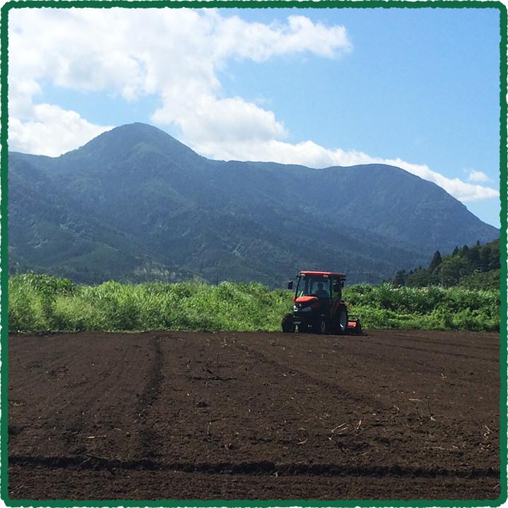 鳥取のおいしい有機野菜 TREE&NORF ほ場について「鷲峰山」