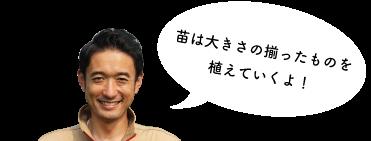 shironegi-subimg-02