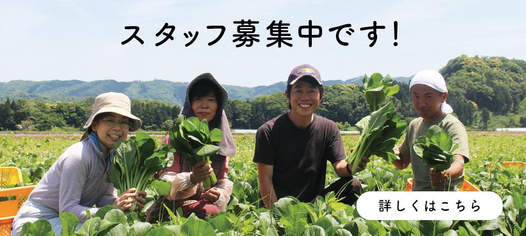 鳥取のおいしい有機野菜 TREE&NORFスタッフ募集中です