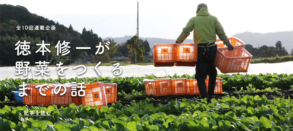 「なぜ、農業を始めたのですか?」TREE&NORF 代表 徳本修一 インタビュー
