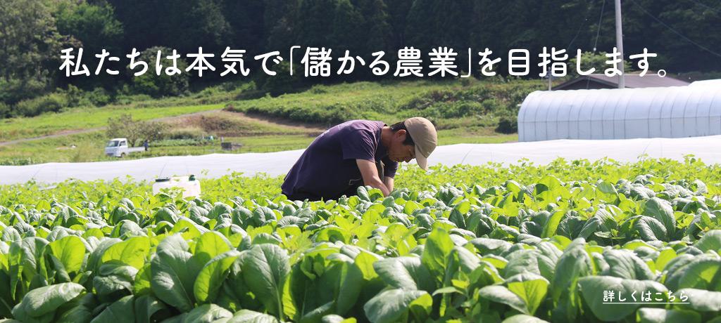 本気で「儲かる農業」を目指す