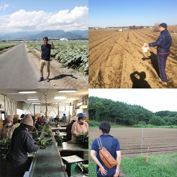 トゥリーアンドノーフ-農業視察